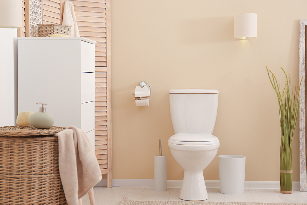 What's in Your Toilet and How Does it Work?