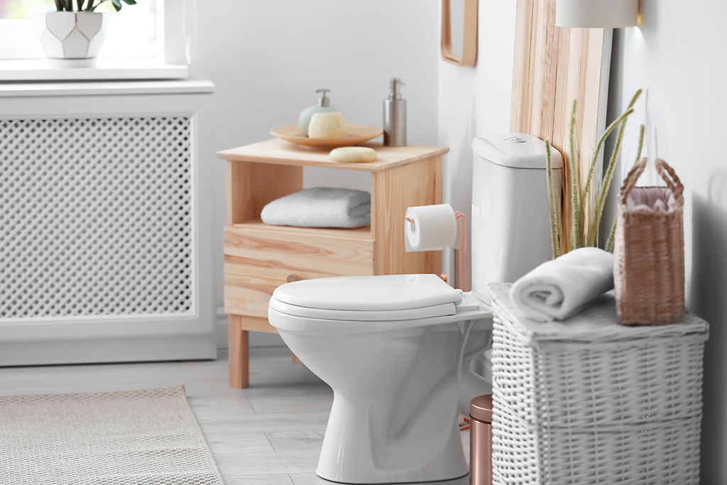 Form and Function: Choosing the Right Toilet