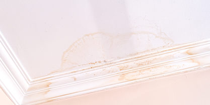 5-Early-Signs-of-Leaky-Pipes-Behind-Your-Walls